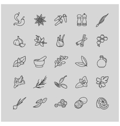 Spices and seasonings line icons vector image
