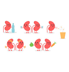 Cartoon doodle kidney characters vector