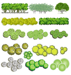 different plants and trees set for architectural vector image