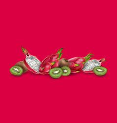 Dragon fruit and kiwi vector