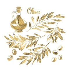 Graphic olive collection vector image vector image