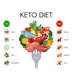 keto diet infographics vector image