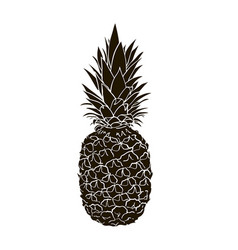 pineapple black and white vector image