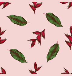 seamless pattern with hand drawn colored heliconia vector image