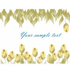 Tulips flower composition vector image