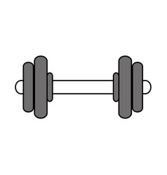 Weights icon image vector