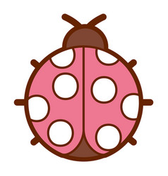 ladybug insect small icon animal vector image