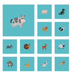 flat icons jackass swine panther and other vector image vector image