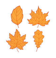 four orange leaves vector image