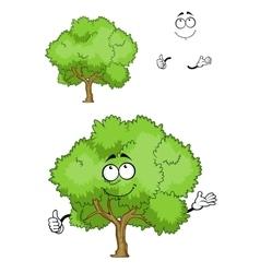 Cartoon green tree character with thumb up vector image vector image