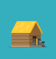 doghouse flat vector image
