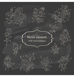 Hand sketched vintage floral elements vector image vector image