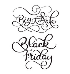 Big sale and black friday calligraphy text on vector