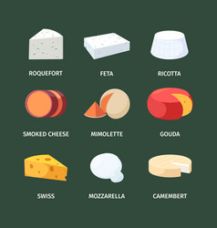 cheese set white cheeses with roquefort and feta vector image
