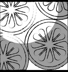 cucumber slice pattern isolated icon vector image