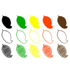Elm leaf color set vector