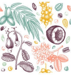 exotic nut seamless pattern with hand drawn vector image