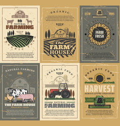 Farm animals field tractor and barn agriculture vector
