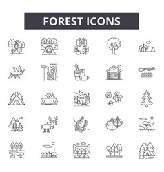 forest line icons for web and mobile design vector image