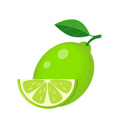 Juicy lime with green leaf and lime slice vector