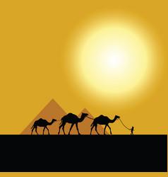 Pyramid egypt vector