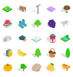 Remote place icons set isometric style vector