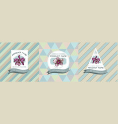 three colored labels with orchid vector image