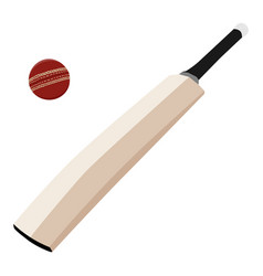 Wooden cricket bat and red cricket ball isolated vector