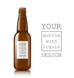 Template of glass beer bottles vector image