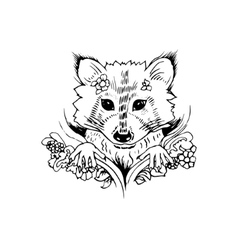Abstract graphic raccoon print vector image