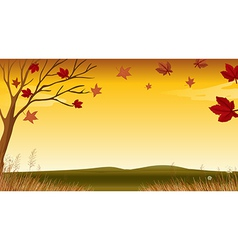 A view of an autumn vector image vector image