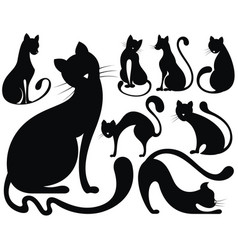 cats collection vector image