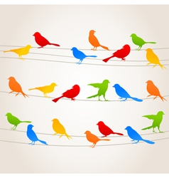Bird on a wire5 vector image vector image