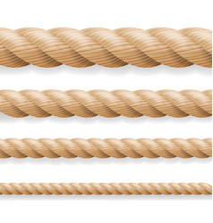 realistic rope different thickness rope vector image