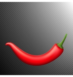 Red chili pepper isolated EPS 10 vector image