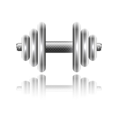 Metal sports dumbbell with reflection vector image