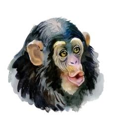 Monkey oriental animal ink painting vector