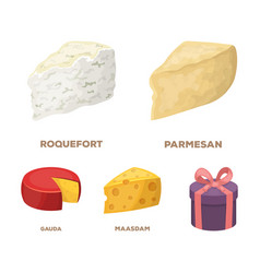 Parmesan roquefort maasdam gaudadifferent vector