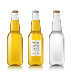 Set realistic bottles vector