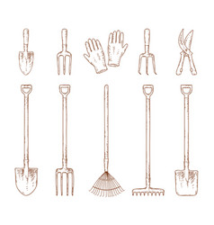 hand drawn garden tools set vector image