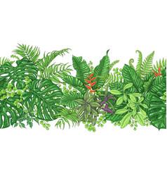 tropical plants line horizontal pattern vector image vector image