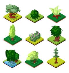 Public park decorative trees isometric 3d set vector