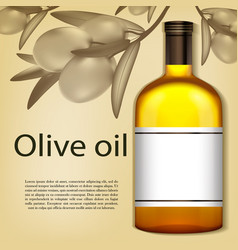 a realistic bottle of olive oil vector image