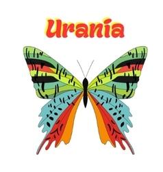 Butterfly urania vector
