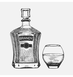 Creative sketch of brandy composition vector image