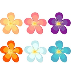 Flowers of different colours vector