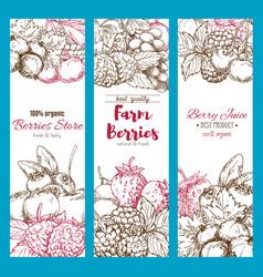banners of fresh garden berries sketch vector image vector image