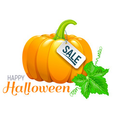 halloween beautiful pumpkin sale vector image vector image