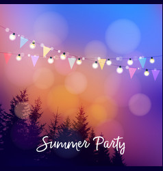 Birthday outdoor summer party or brazilian june vector