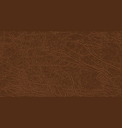 Colored skin texture genuine or faux leather vector